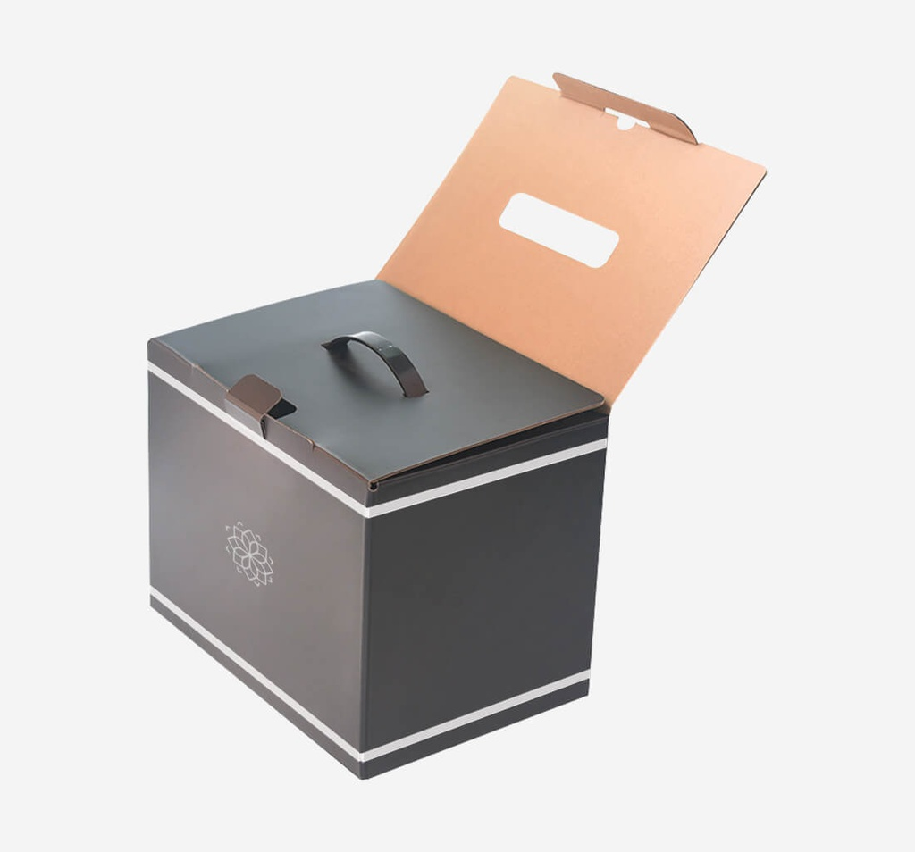 Handle Boxes Packaging